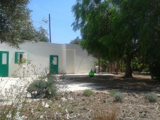 casa indipendente con grande giardino nel parco