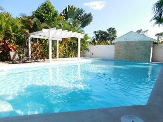 Villa LARIMAR Playa Popi