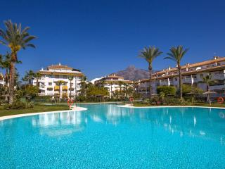 Private garden, BBQ and large pool in Puerto Banus, Puerto Jose Banus