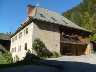 France holiday rentals in Rhone-Alpes, Morzine