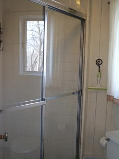 A suite with a full bath with garden view  at Rochester Vacation house