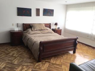 Spacious 3 bedroom apartment Calle 100, Bogota