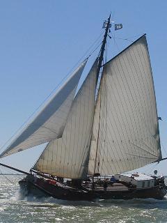 The Windbruid sailing