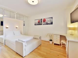 Cozy Studio Apartment in Chelsea, Londres