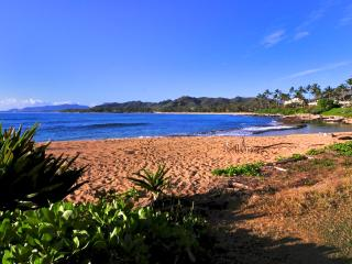 Beachfront, steps to our beach, two bedrooms , one full bath, great for families, Kapaa