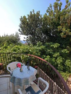 Balcony view from the first room