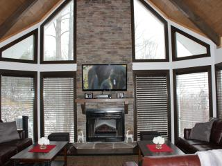 Fabulous Chalet with Home Theater, Incredible View, Gatlinburg