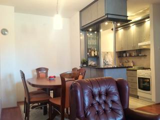 Budva Two Bedroom Apartment (041)