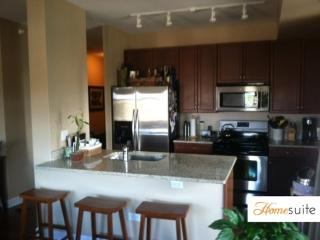 MAGNIFICENT 2 BEDROOM 2 BATHROOM FURNISHED APARTMENT, Chicago