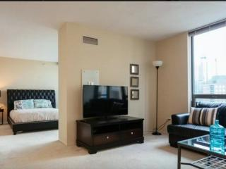 UPSCALE  FURNISHED 1 BEDROOM 1  BATHROOM APARTMENT, Chicago