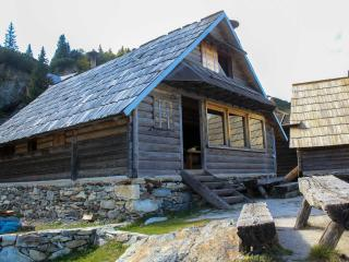 Log  cabin - Prokosko lake