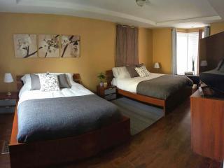 Modern n' cozy family apartment in house., Niagara Falls