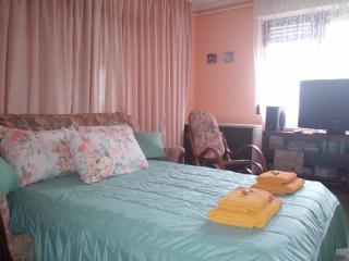 Nela apartment 2, NIS