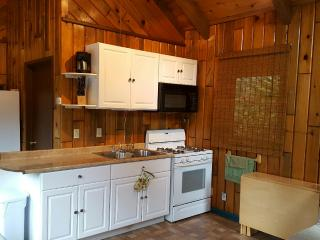 Lake Almanor Cabin