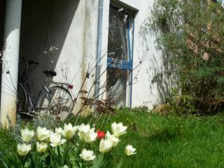 Appartement 2ch 45m2, quartier calme et verdoyant, Louvain-la-Neuve