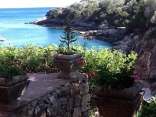 32 gradini dall' Acqua Isola Di Giannutri