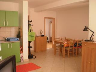 Apartment with the terrace and pool, Srima