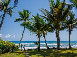 Nice 2 bedroom on the beach, Cabarete