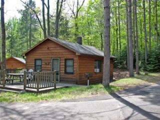 Old Stoney`s Resort - Walleye Cabin, Arbor Vitae