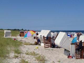 Strandhaus Wackerballig- 100 Meter zum Strand