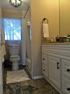 Bathroom: Shower in Tub, toilet, sink, basic toiletries, blow dryer