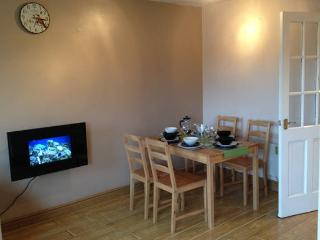 A cosy wee flat in Glasgow Green!!!