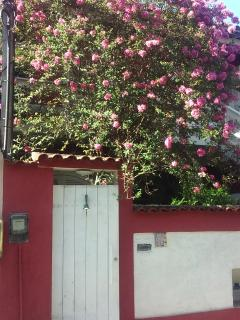 alugo para olimpíadas casa  com piscina/churrasqueira, próximo à vila olímpica.