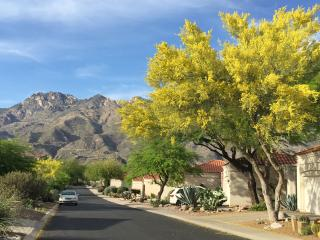 New Listing! Picturesque 2BR + Den Tucson Foothills Home w/Wifi, Awesome Mountain Views & Hot Tub/Tennis Court Access - Close Proximity to U of A, Sabino Canyon, Golf, Shopping, Hiking & More!