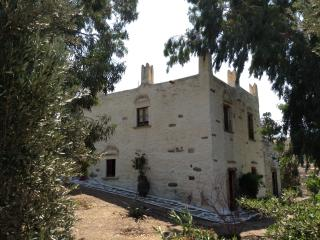 Amazing Stone Towerhouse & huge garden., Naxos Town