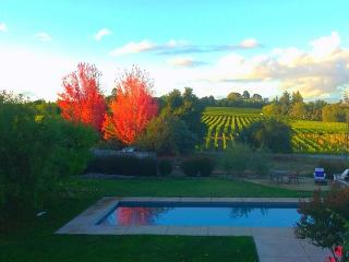 Sonoma Wine Country Farmhouse with Salt Water Pool, Sebastopol