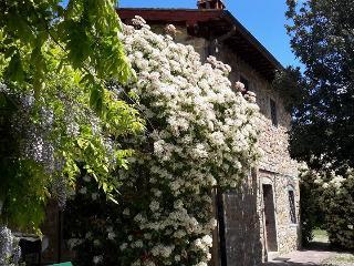 Grace Hayloft - Il Fienile di Grazia, Castelfranco di Sopra