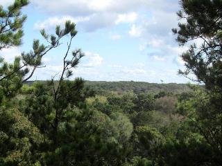Enjoy views of the Beautiful Dry Meadow, Wellfleet