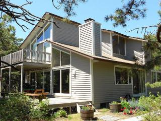 Bright and spacious near beaches on Lt. Island, Wellfleet