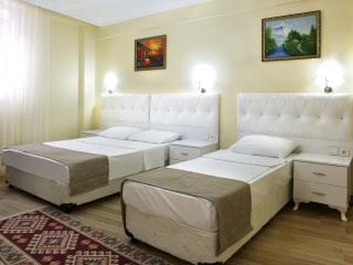 Sultanahmet,Bedspacer Accommodation
