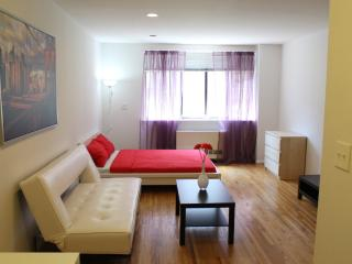 Beautiful Studio Apartment, Ciudad de Long Island