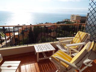 Le Saint Charles - appartement - terrasse - Monaco