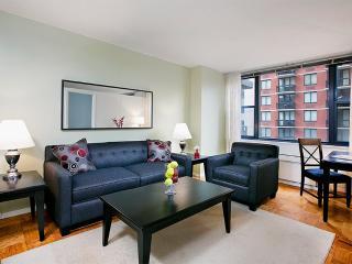 Beautiful 1 Bed 1 Bath Apartment, Ciudad de Long Island