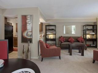 Impressive 1 Bedroom, 1 Bathroom Apartment - Amazing Amenities, McLean