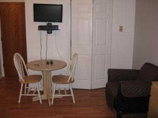 Fully Furnished Studio Apartment in Chicago - With Wireless Internet and Kitchen