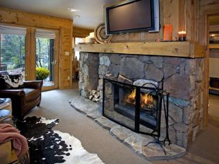 Wood burning fireplace in main room