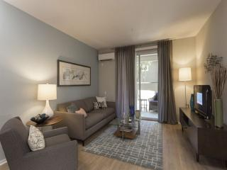 BEAUTIFUL FURNISHED 1 BEDROOM 1 BATHROOM APARTMENT, Campbell