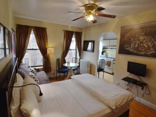 Beautiful Studio Apartment, Red Hook
