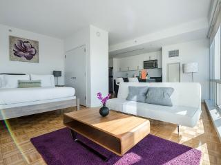 Wonderful Modern Furnishings - Bright Studio Apartment in Jersey City