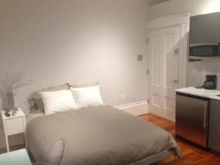 Furnished Studio Apartment at Temple St & Coolidge Ave Boston