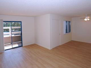 SOPHISTICATED FURNISHED 1 BEDROOM, 1 BATHROOM HOME, Sunnyvale