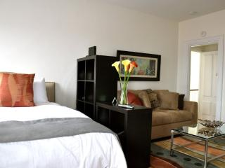 WONDERFULLY FURNISHED, CLEAN AND COZY STUDIO APARTMENT, Boston