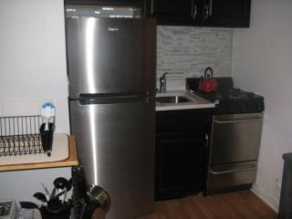 Furnished Studio Apartment at W Division St & N LaSalle St Chicago