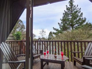 LODGE 26 lodge with hot tub, pet-friendly, on Honicombe Manor resort