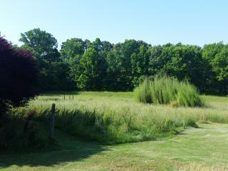 Rural Retreat in Rolling Hills, Waynesboro