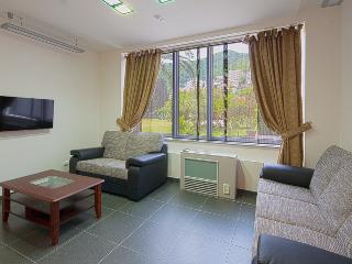 One bedroom apt II for 3 persons, Budva